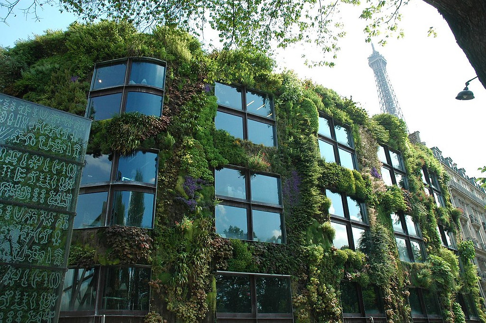 vertical gardens of the Musee du Quay Branly