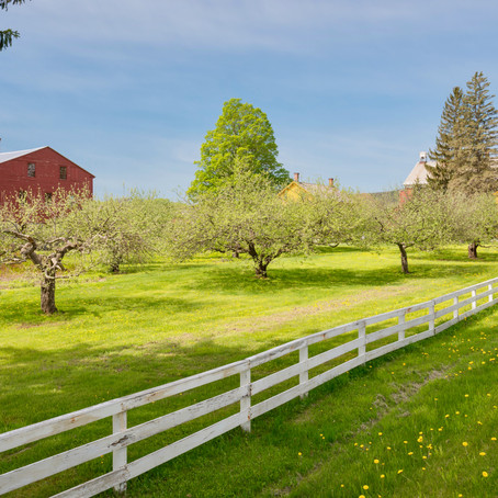 What To Do On a Berkshires Road Trip, Where Culture Meets Nature