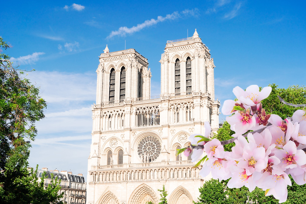 Notre Dame de Paris, one of France's most famous landmarks