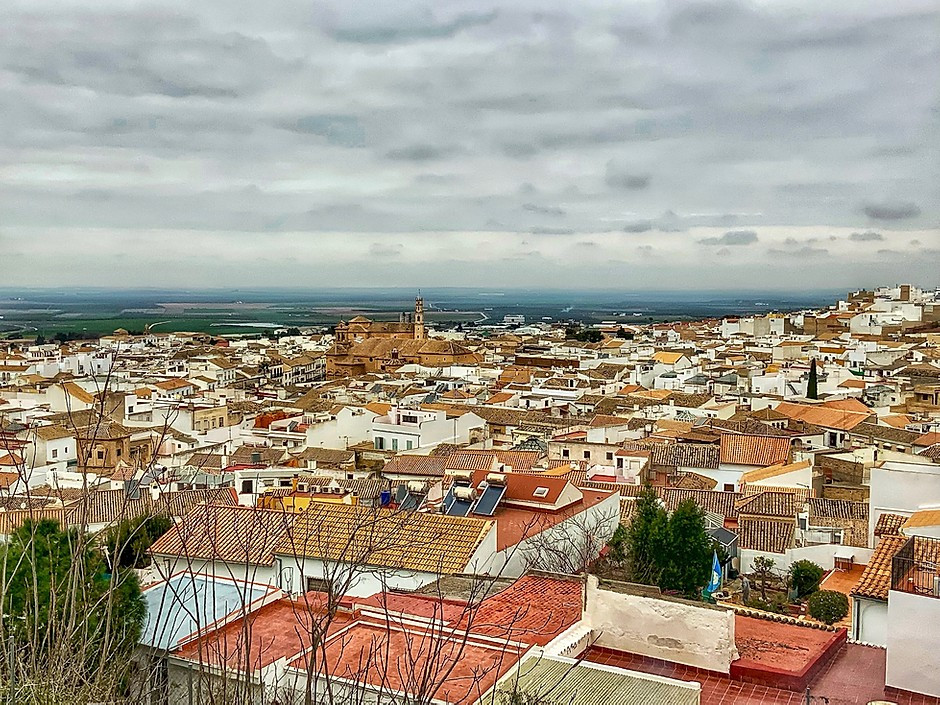 town of Osuna seen from the Collegiate Church