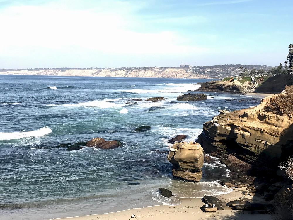 the La Jolla coastline