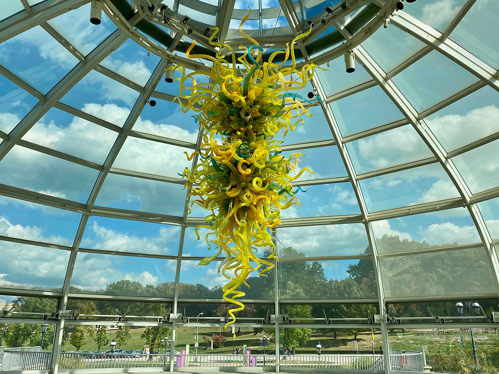 the Chihuly glass chandelier in the lobby of Phipps --  -- Goldenrod, Teal and Citron Chandelier
