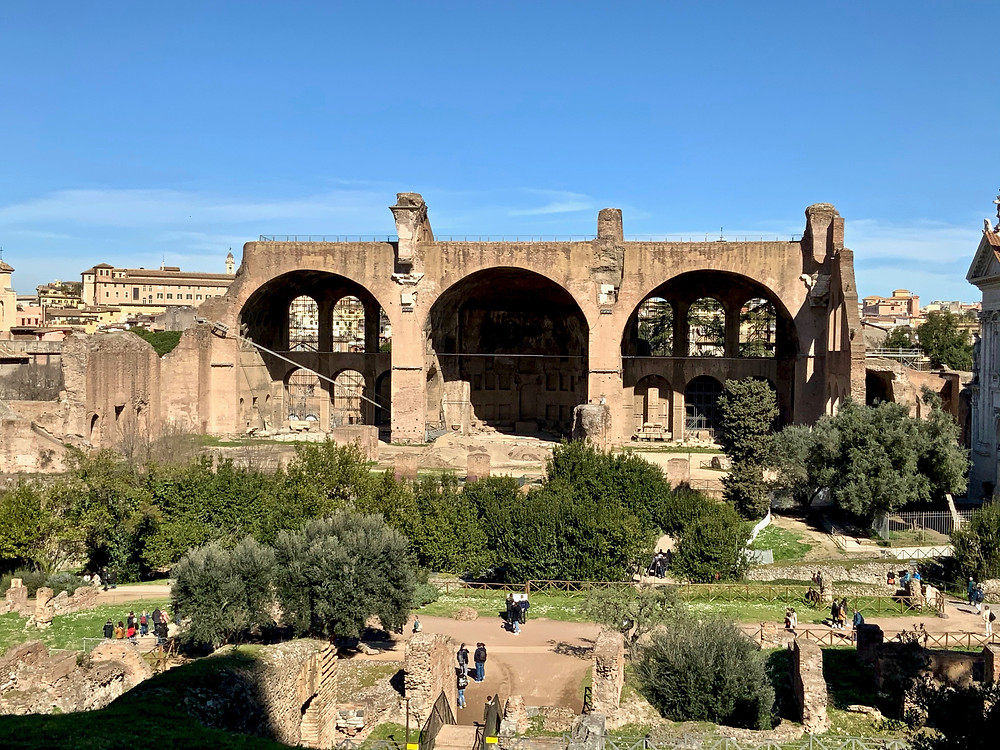 view of the Basilica of Maxentius in the Roman Forum from Palatine Hill