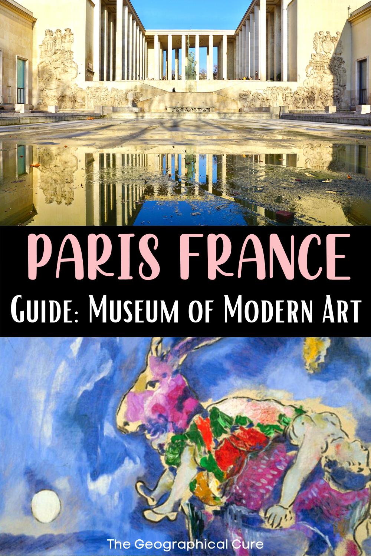 ultimate visitor's guide to Paris' Museum of Modern Art, a hidden gem in Paris