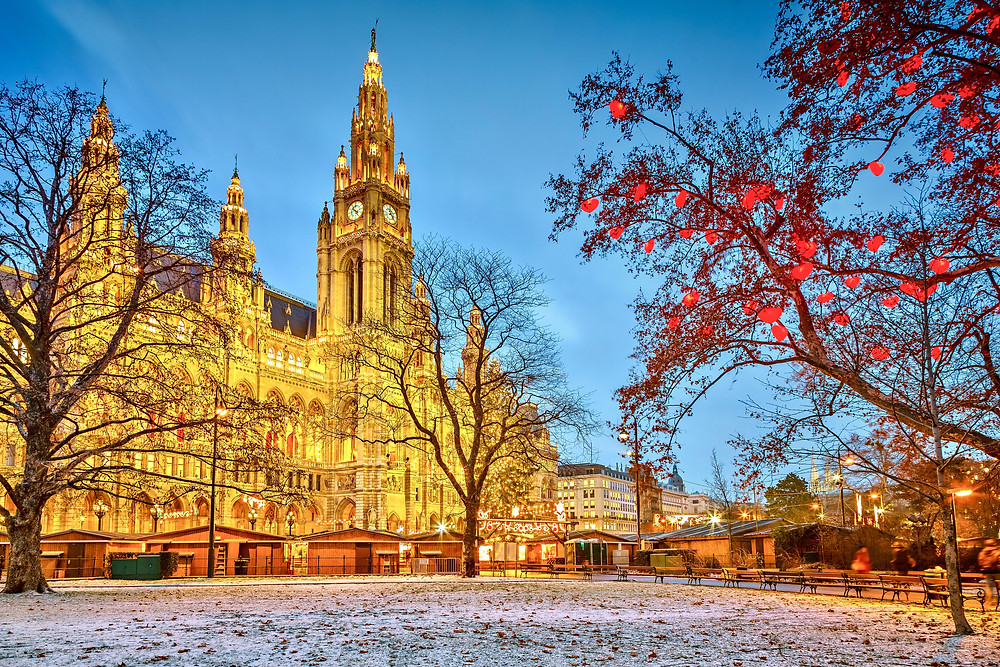the Viena City Hall in winter