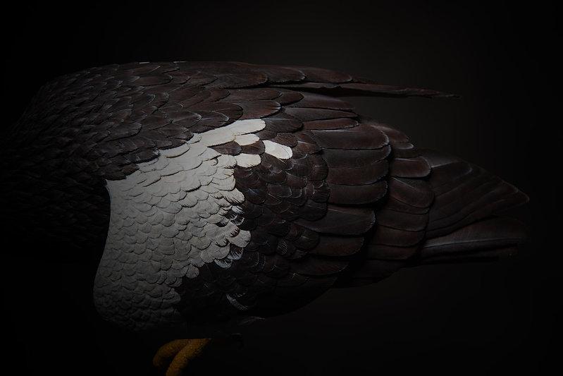 woodcarving-35.jpg