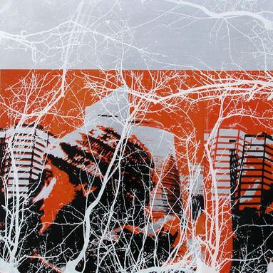 Marian F. Moratinos / The Artificial Order / Aluminiums