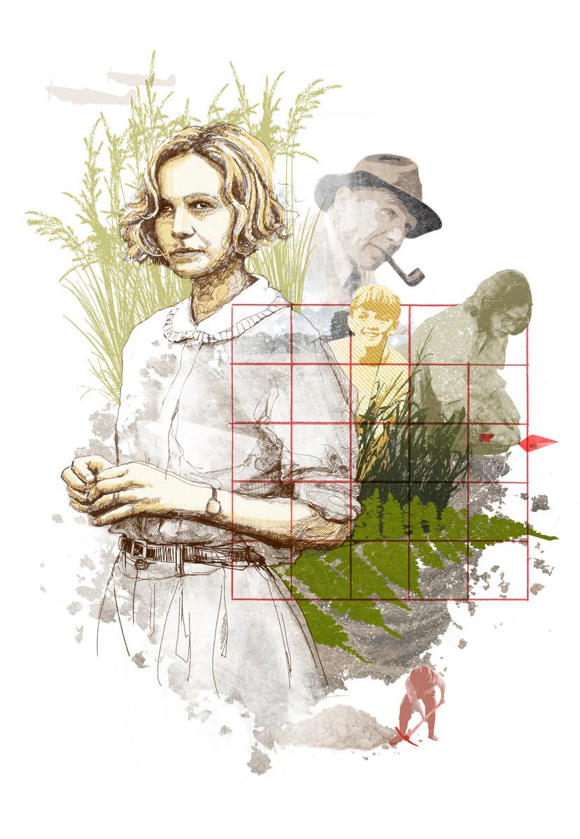 The Dig Illustration