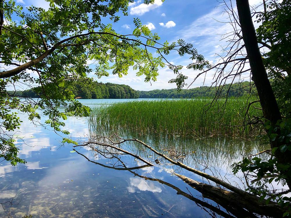 Blick auf den Liepnitzsee bei Wandlitz
