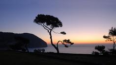 Die 35 besten Finca-Hotels auf Mallorca