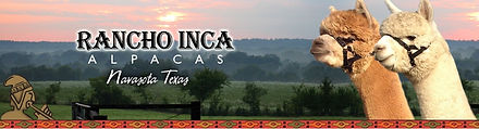 Racho Inca Alpaca Logo