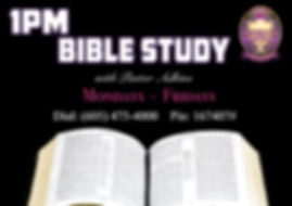 1pm daily bible study and prayer call.jp