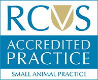Small_Animal_Practice.jpg