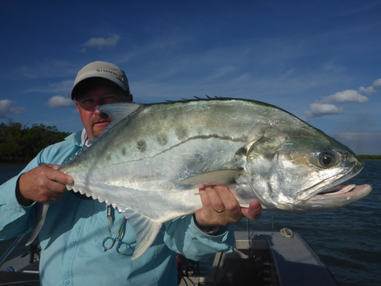 Large queenfish of the surface