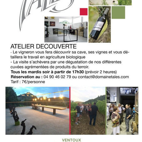 Atelier Découverte au Domaine Talès vin Bio à Entrechaux