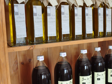 La cueillette des olives au Mas en Provence