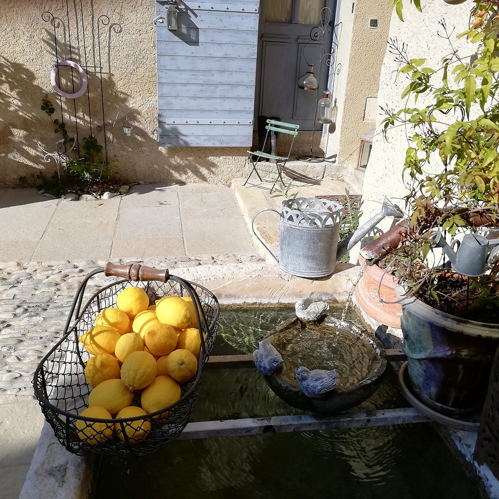 Ces citrons sont délicieux pour une confiture maison