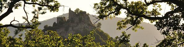 Le mas en Provene vu sur le château d'Entrechau