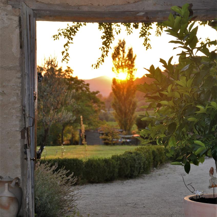 Le mas en provence : le jardin