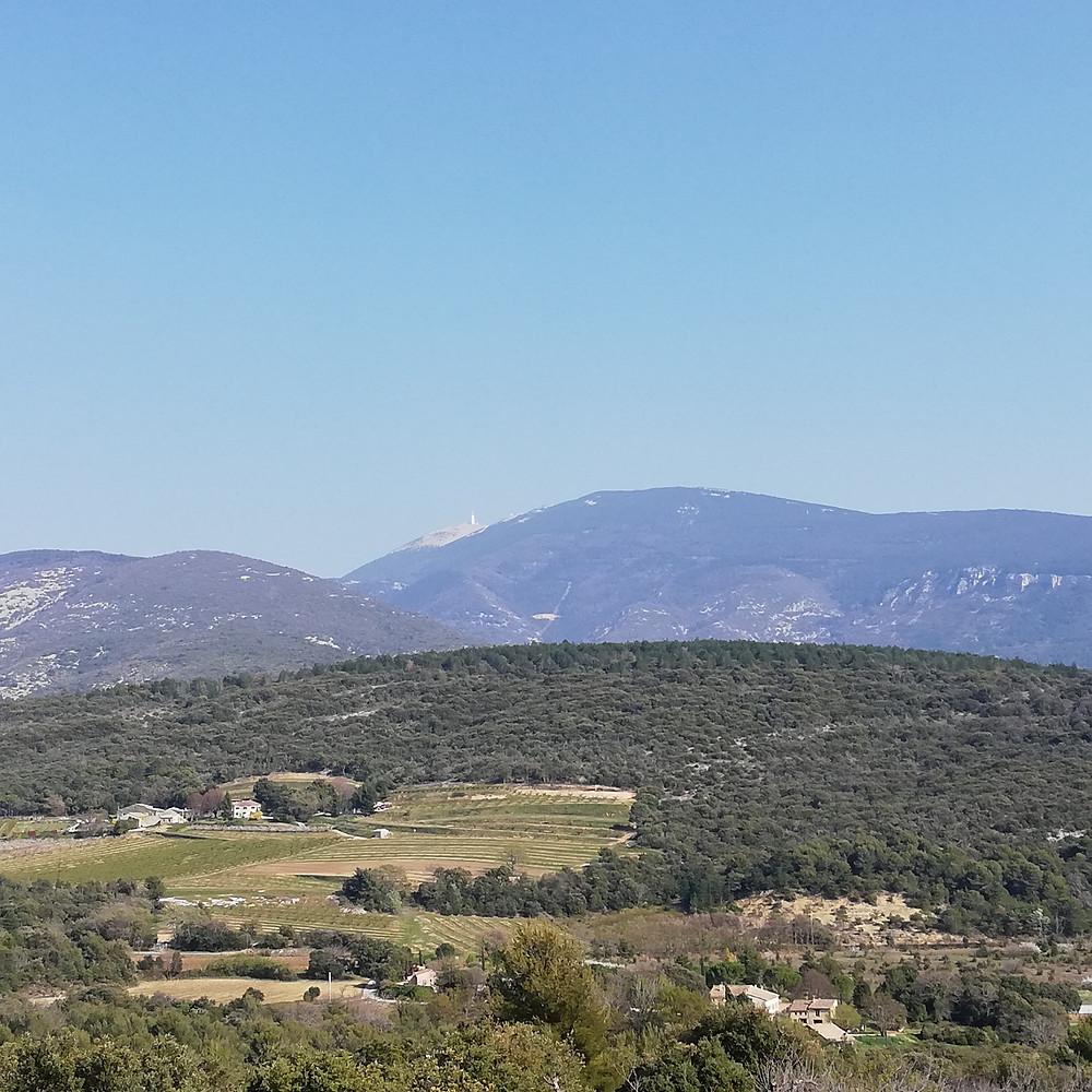 Vue panoramique sur le Ventoux lors d'une ballade