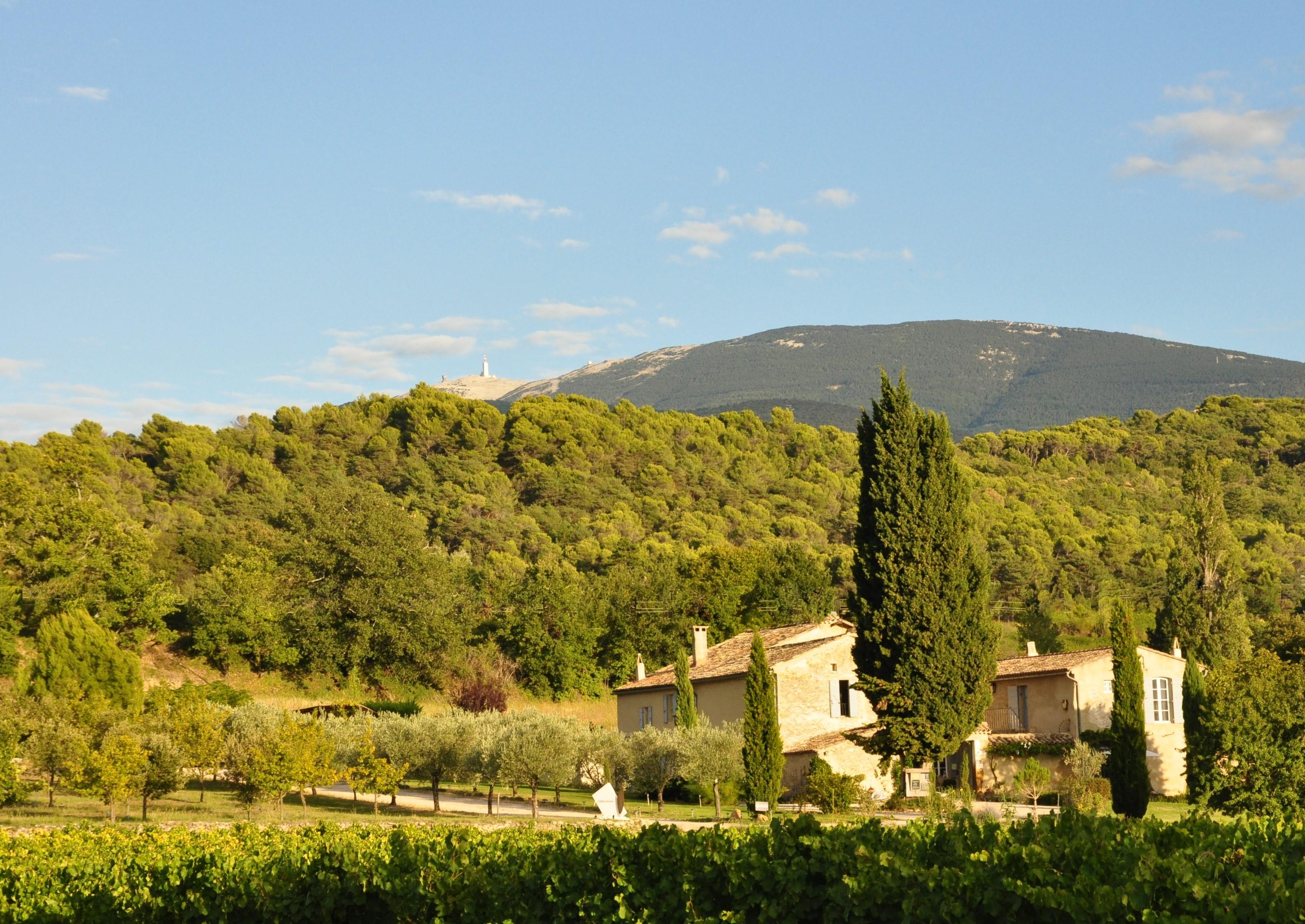 Au pied du mont Ventoux
