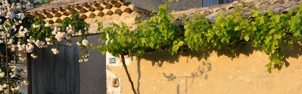 Le mas en Provence Maiso d'hôtes bio & chic
