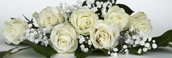 roses-1420745_1920