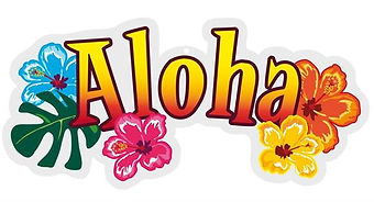 2018 Aloha banner.jpg