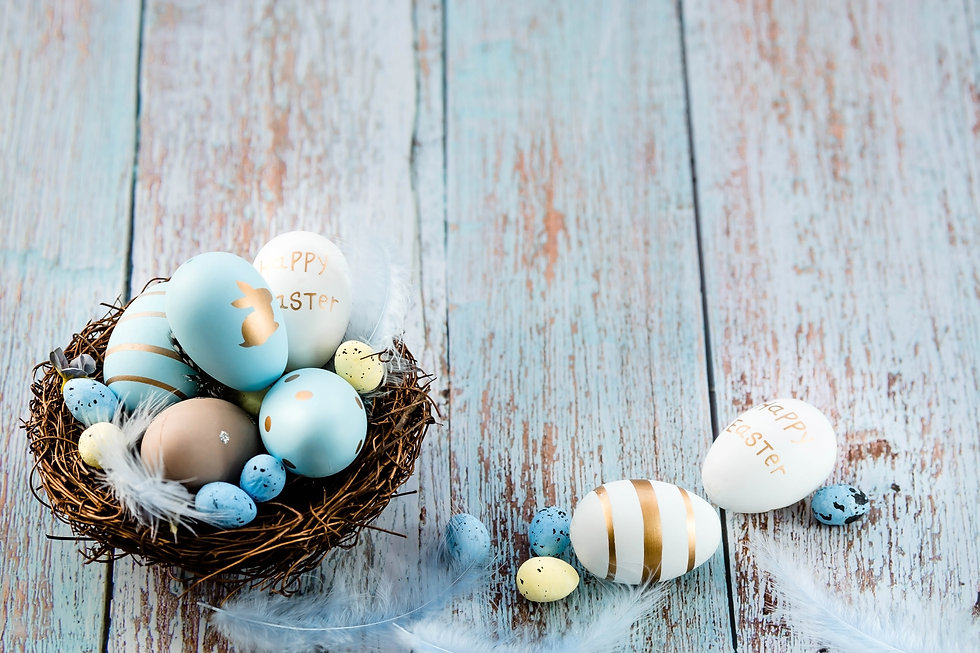 Easter eggs, feathers in a nest on a blu