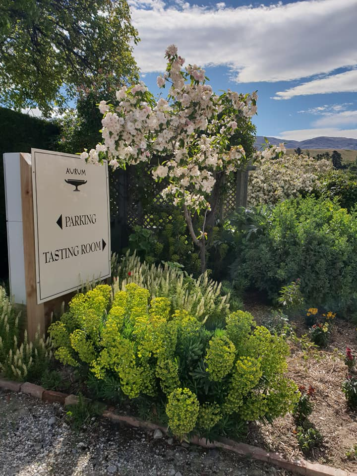 Aurum winery, Cromwell, New Zealand wine, New Zealand travel blog