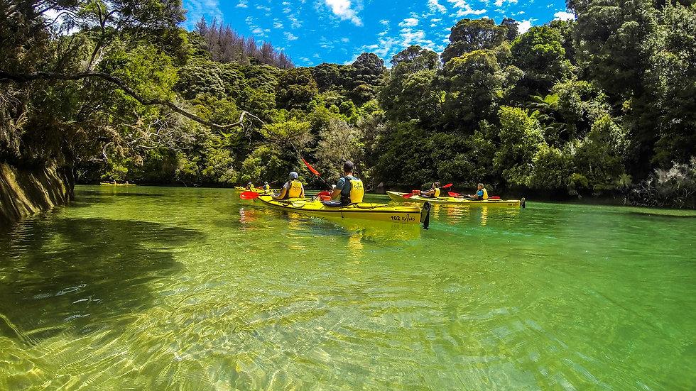 Каякинг в национальном парке Абель Тасман, Новая Зеландия. Туры в Новую Зеландию. Гид в Новой Зеландии.