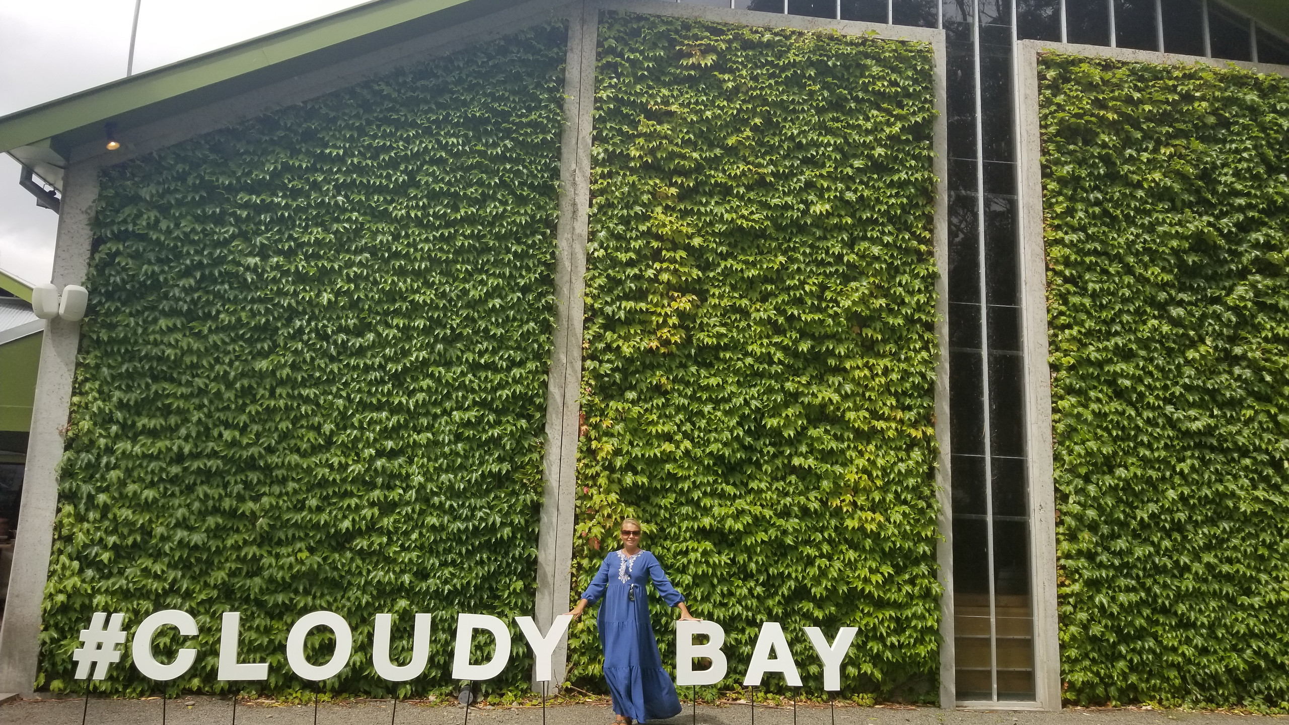Cloudy Bay winery, Marlborough, New Zealand travel blog