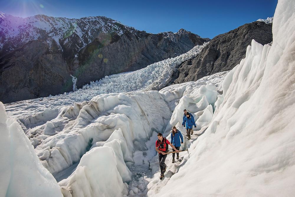 Ледник Фокса Новая Зеландия