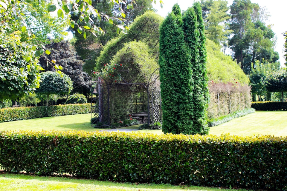 Tree church, New Zealand attractions, New Zealand activities, what to visit in New Zealand