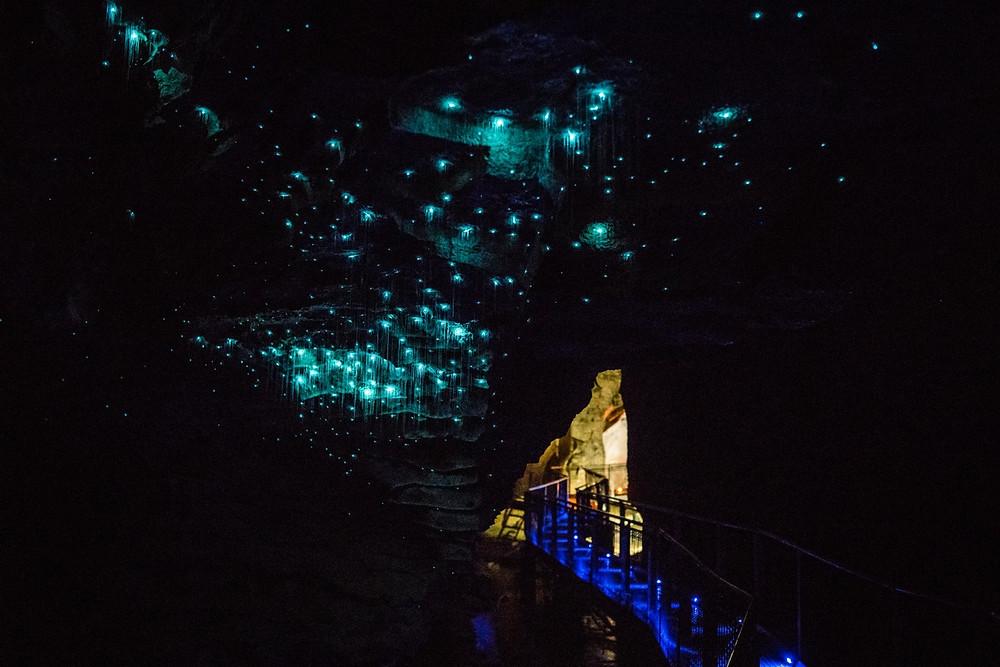 Светлячки в пещерах Вайтомо Новая Зеландия