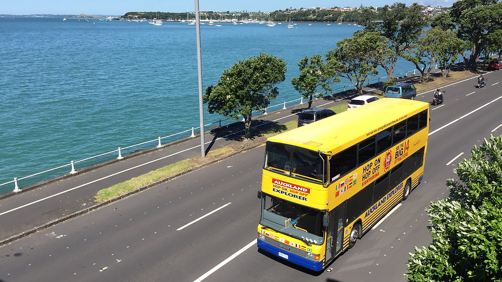 Hop On Hop Off Explorer Bus Auckland New Zealand