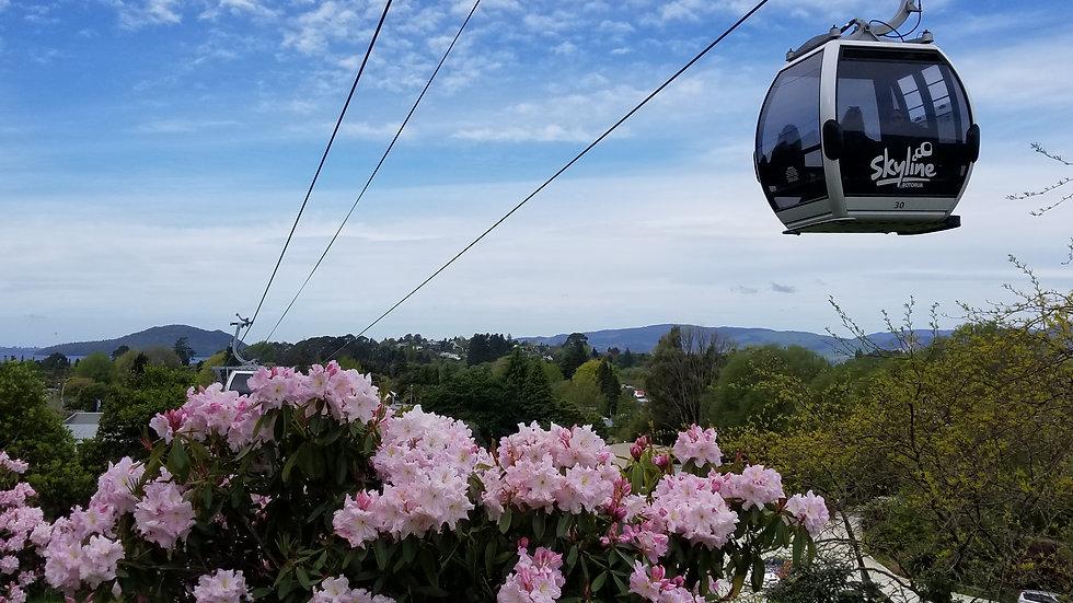 Skyline Gondola Rotorua New Zealand