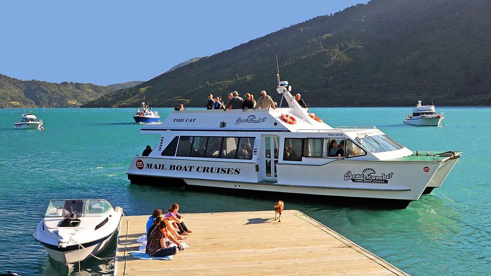 Marlborough cruises, New Zealand