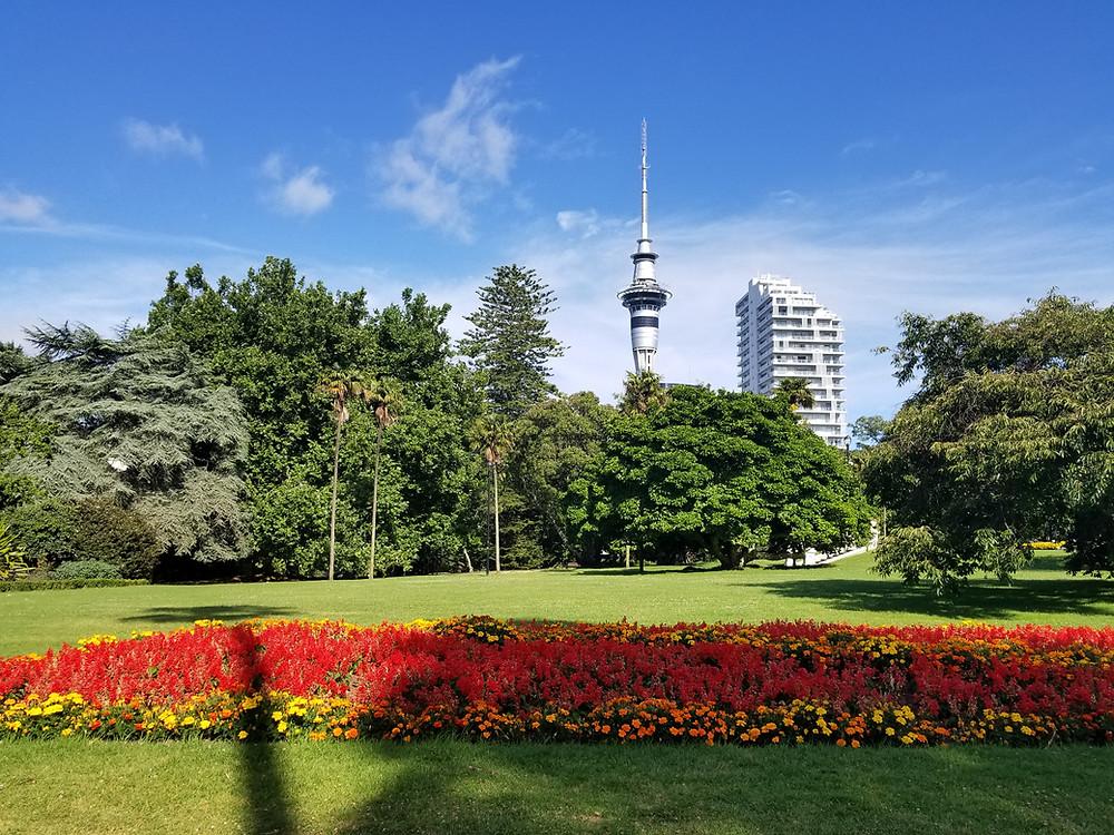 Альберт парк Окленд Новая Зеландия