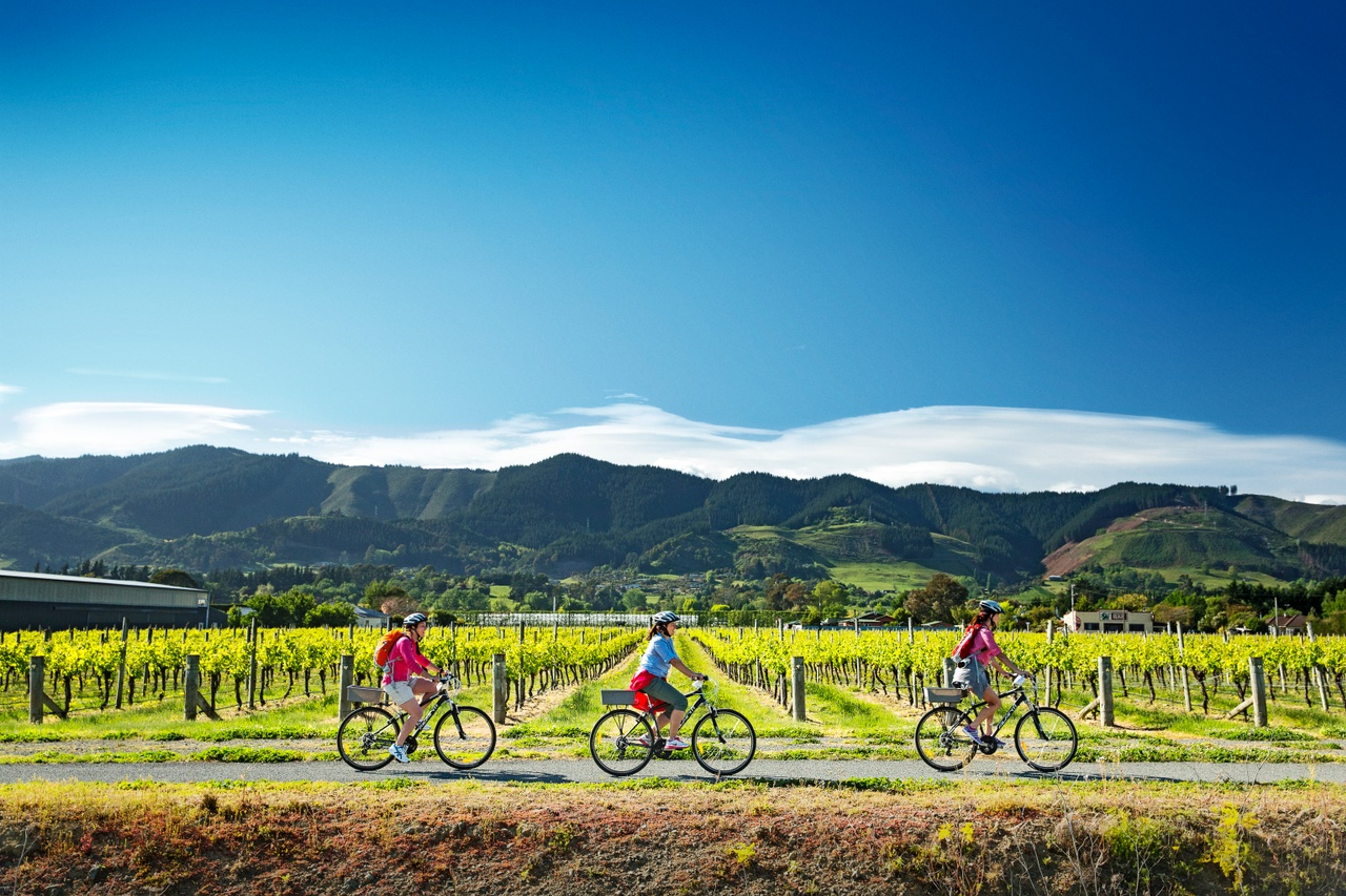 Cycling in Marlborough Sounds New Zealand