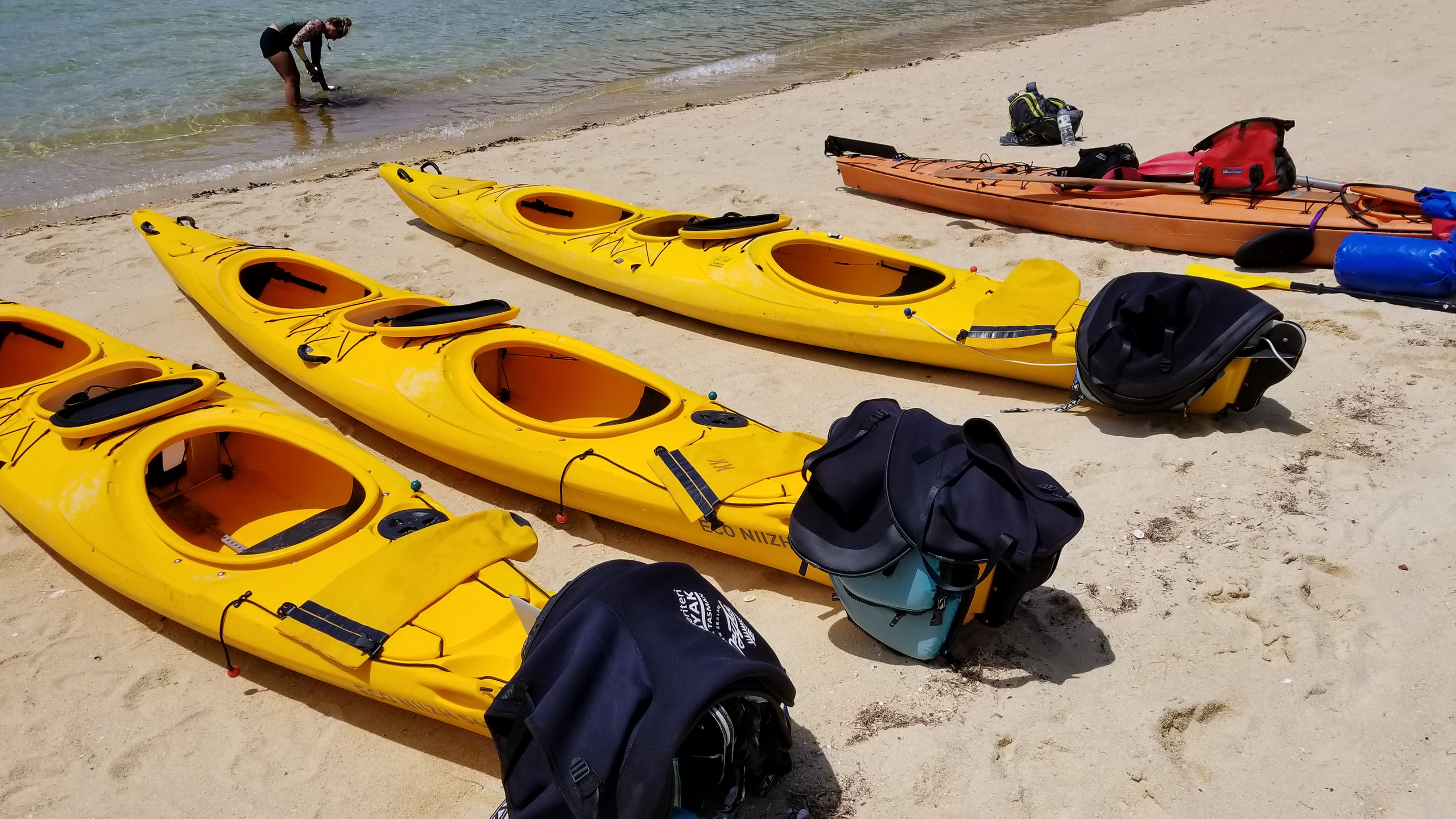 Kayaking in Abel Tasman National Park, New Zealand attractions, New Zealand activities