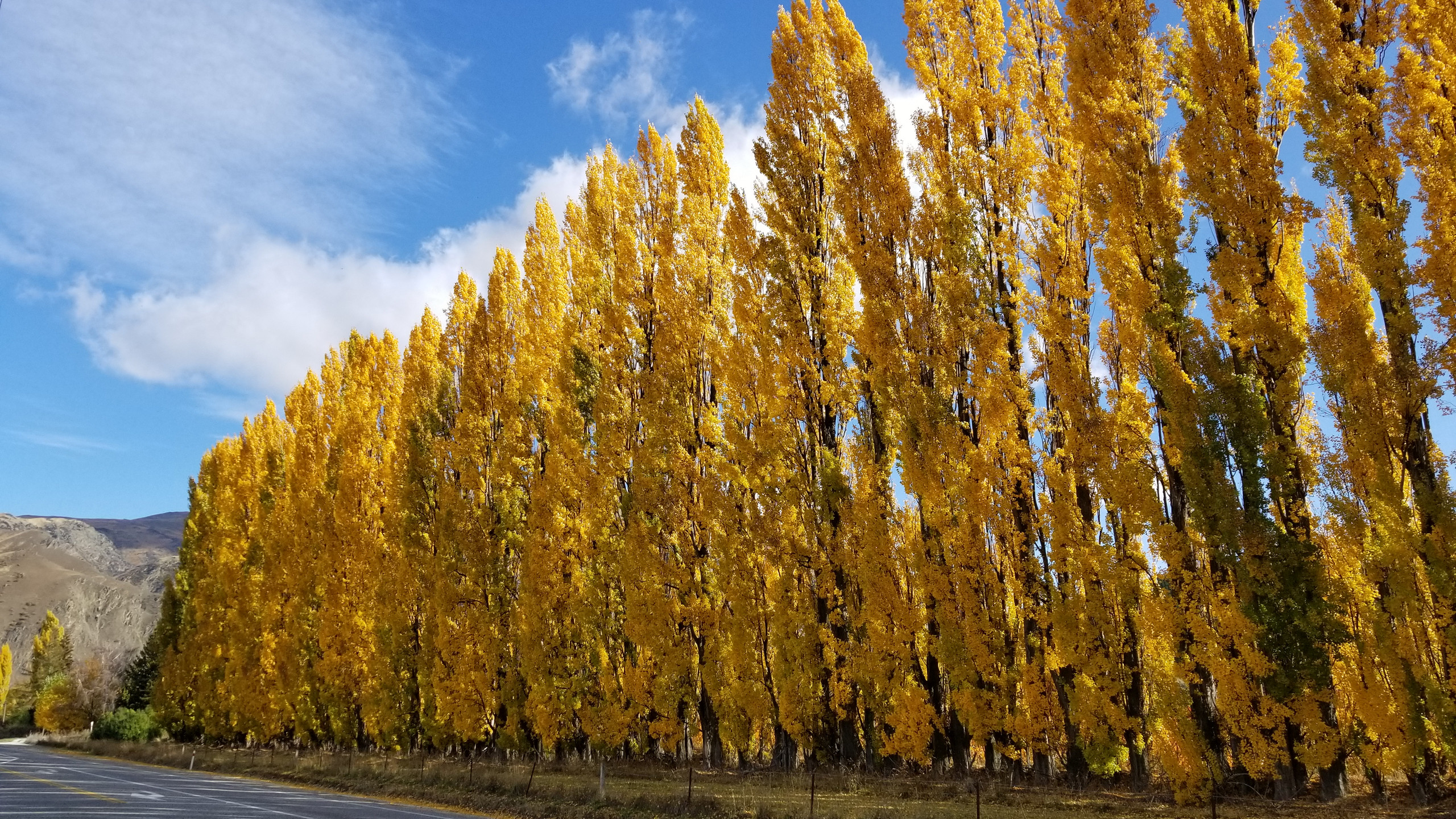 Autumn New Zealand, New Zealand attractions, New Zealand activities