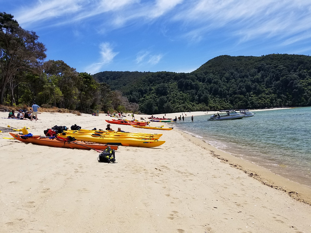 Kayaking in Abel Tasman National Park, group tour to New Zealand