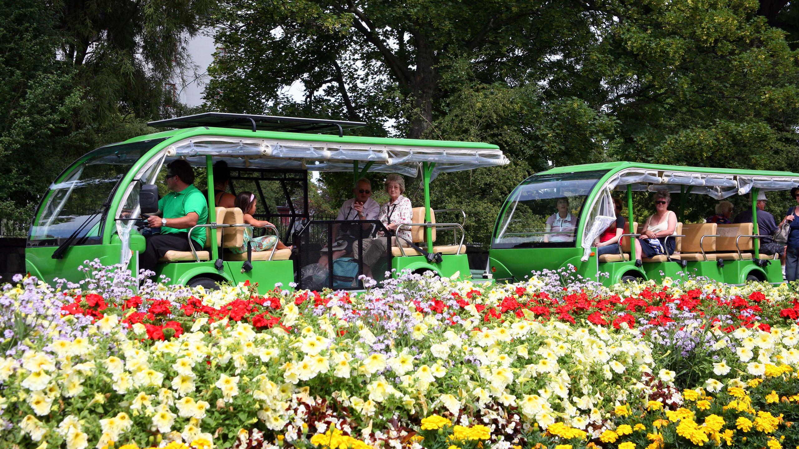 Botanic gardens, Christchurch, New Zealand activities, New Zealand tours