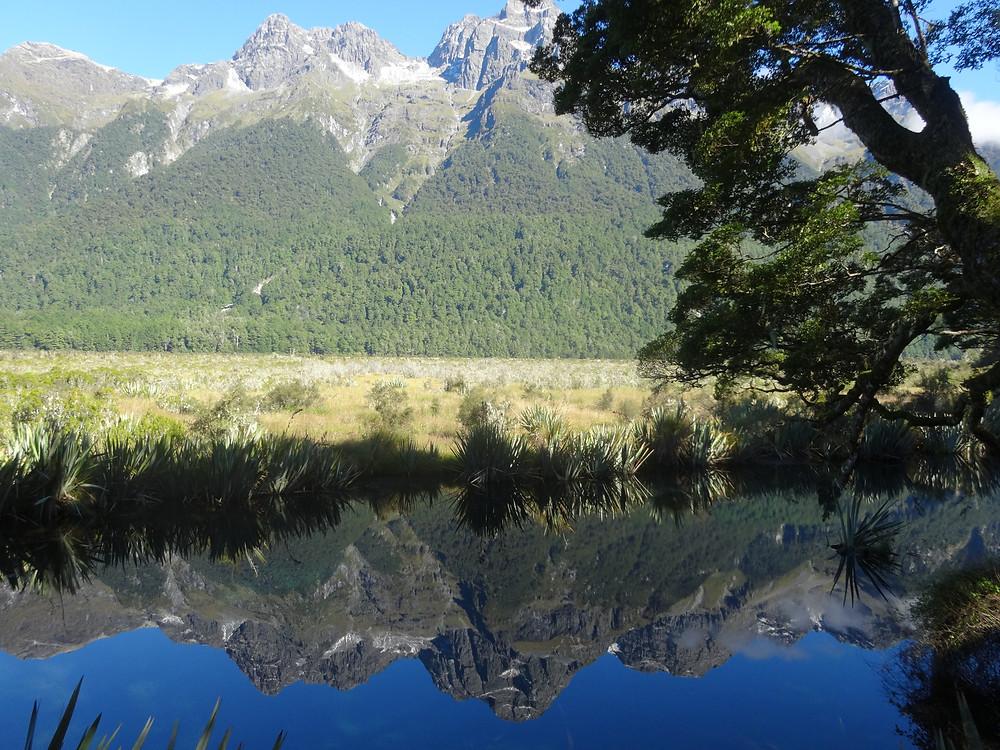 Зеркальные озёра, национальный парк Фиордленд, Новая Зеландия. Туры в Новую Зеландию.