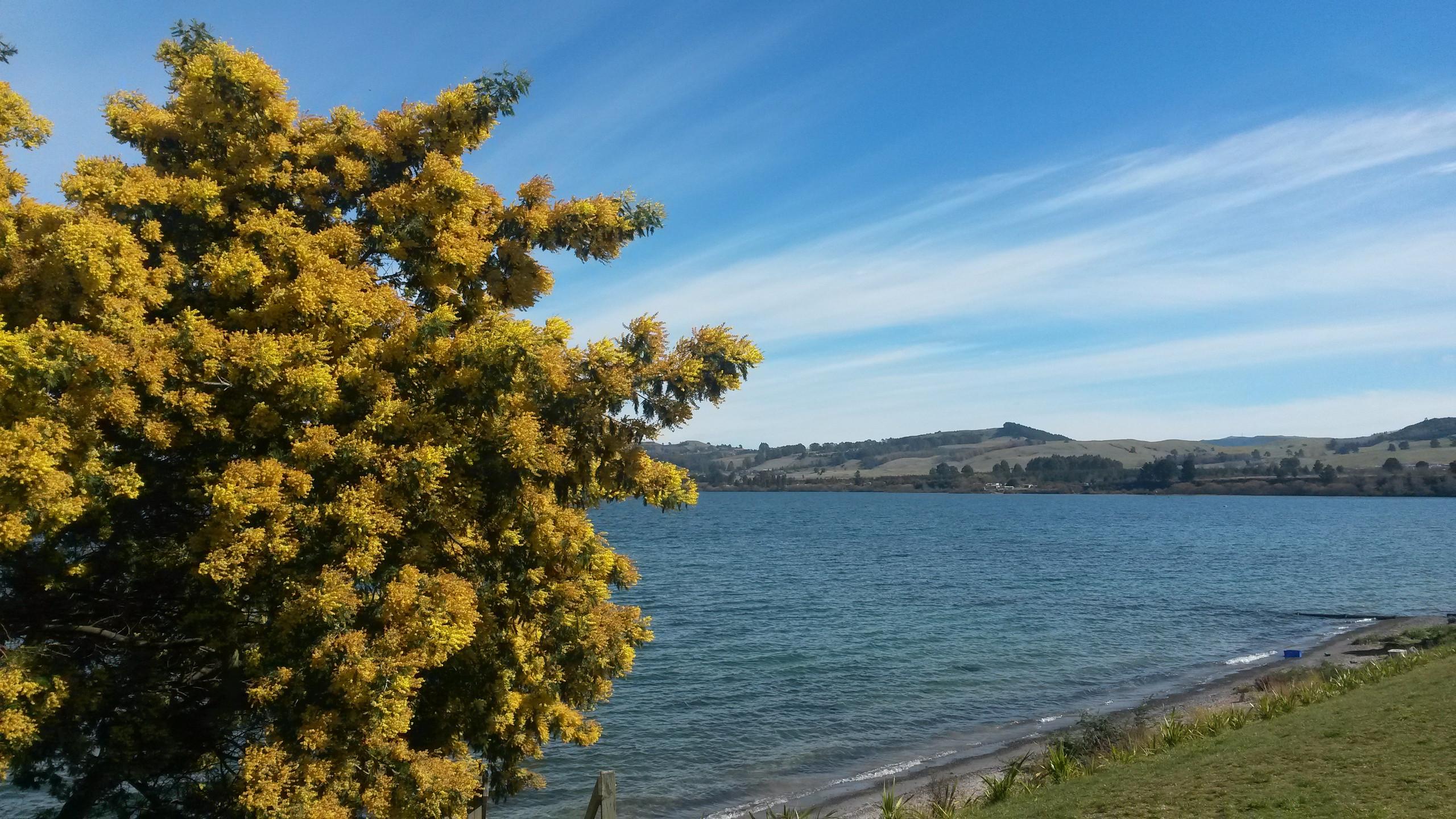 Lake Taupo New Zealand, New Zealand activities, New Zealand attractions