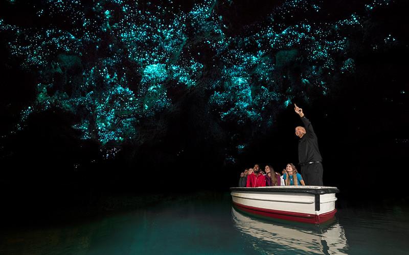 Пещера Глоувом Вайтомо Новая Зеландия