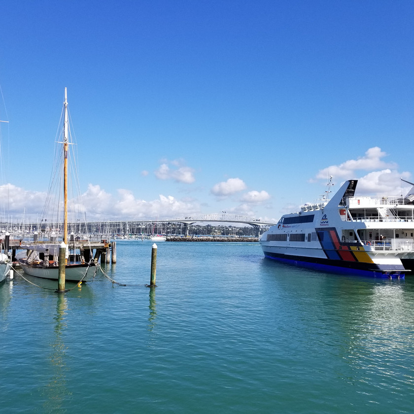 Auckland City Sights Tour and Harbour Cruise