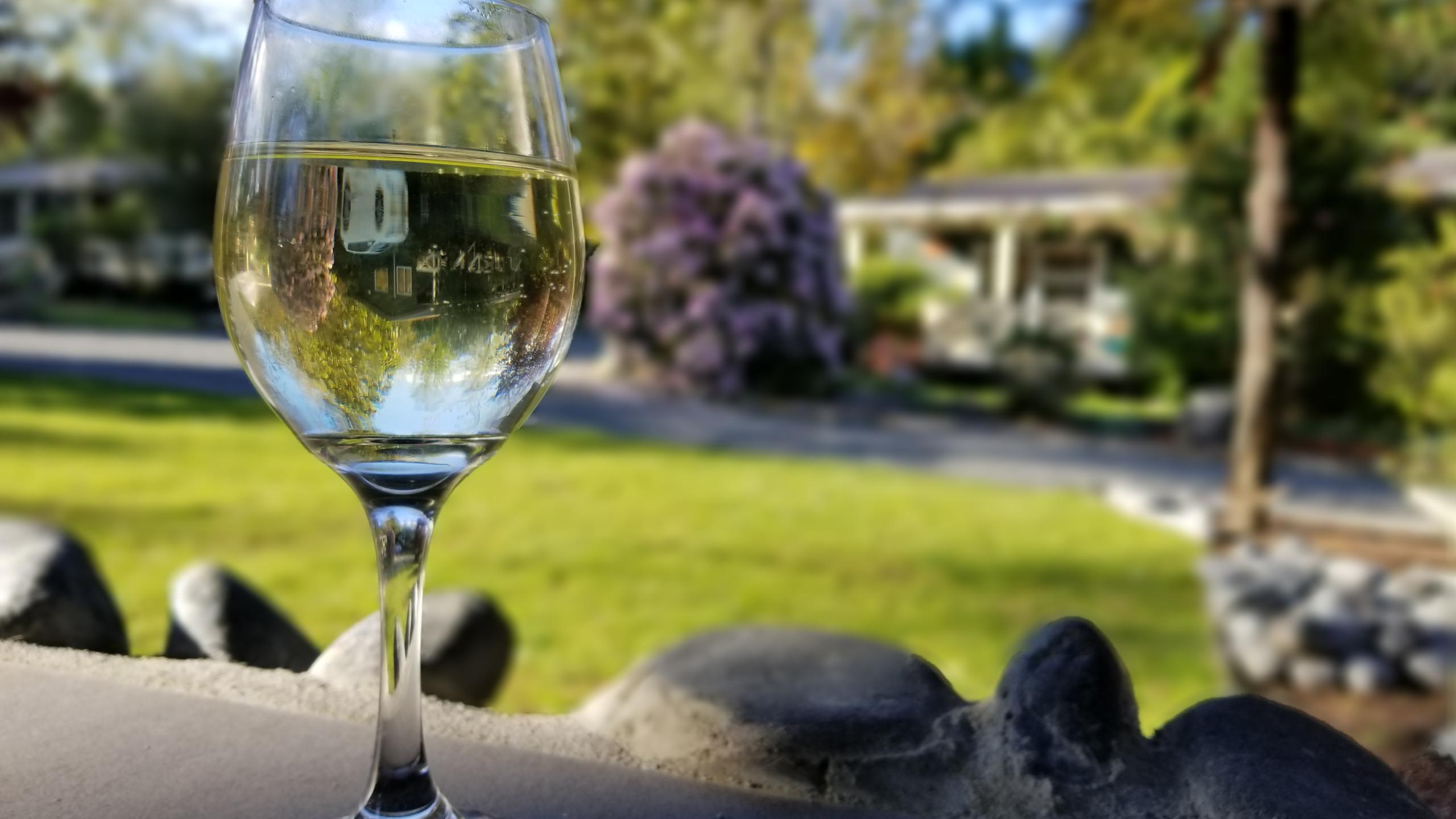 Wine New Zealand