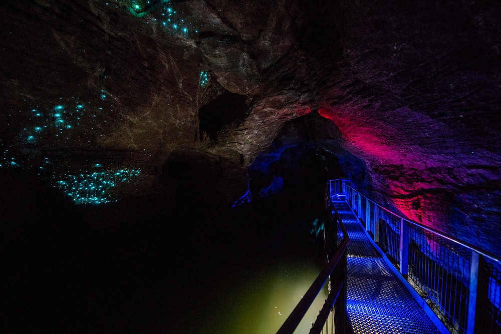 Пещеры Вайтомо, Новая Зеландия, туры в Новую Зеландию